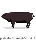 Flat geometric Large Black pig 42786419