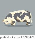 Flat geometric Kunekune pig 42786421