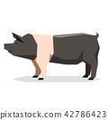 Flat geometric Hampshire pig 42786423