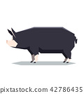 Flat geometric Berkshire pig 42786435