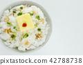 흰색 배경, 흰 배경, 하얀 배경 42788738