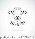 Vector of sheep head design on white background. 42789012