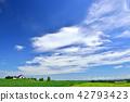 field, hill, landscape 42793423