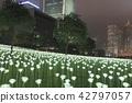 Light LED Rose Garden In Hong Kong 42797057