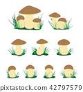 white cep mushroom illustration set 42797579