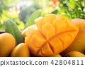 신선한 망고 과일 Fresh Mango 芒果 水果 신선한 夏天 42804811