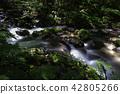 Okuse in the stream 42805266