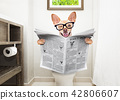 dog on toilet seat reading newspaper 42806607