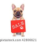 sale shopping dog 42806621