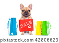 sale shopping dog 42806623