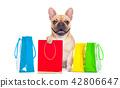 sale shopping dog 42806647