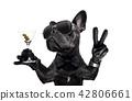 peace cocktail dog 42806661