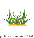 Bunches of green grass on an earthen mound. 42811146