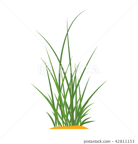 Bunches of green grass on an earthen mound. 42811153