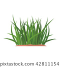 Bunches of green grass on an earthen mound. 42811154