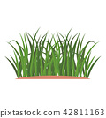 Bunches of green grass on an earthen mound. 42811163