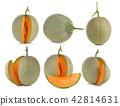 cantaloupe melon isolated on white background 42814631