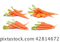Carrot isolated on white background 42814672