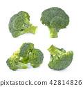 broccoli isolated on white background 42814826