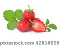 Strawberry isolated on white background 42816050