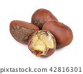 chestnuts on white background 42816301