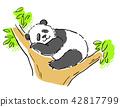 动物 熊猫 大熊猫 42817799