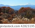ภูเขาฟูจิ,ภูเขาไฟฟูจิ,ภูเขาหิมะ 42823195