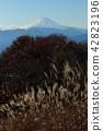 ภูเขาฟูจิ,ภูเขาไฟฟูจิ,ภูเขาหิมะ 42823196