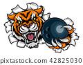 bowling, ball, mascot 42825030
