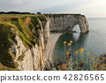 The cliffs at Etretat in Normandy 42826565