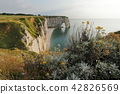 The cliffs at Etretat in Normandy 42826569