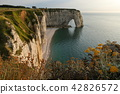 The cliffs at Etretat in Normandy 42826572