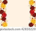 cosmos, cosmea, flower 42830220