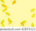 은행나무, 낙엽, 가을 42833121