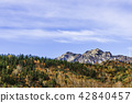 Autumn leaves of Tsugaike Nature Park 42840457