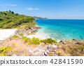 Tropical white sand beach Aerial 42841590