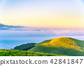 hill, sea, of 42841847