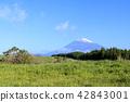 富士山 草地 草原 42843001