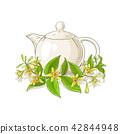 vanilla, flower, blossom 42844948