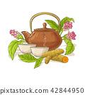 turmeric, herb, vector 42844950