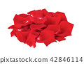 red rose petals isolated on white 42846114
