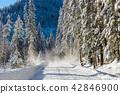 snow slides off the trees onto the mountain path 42846900