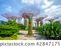 Landscape of Gardens by the Bay in singapore 42847175