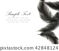 Watercolor feather on white background 42848124
