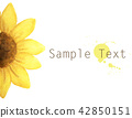 yellow flower with place for text. Watercolor 42850151