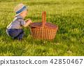 toddler, child, boy 42850467