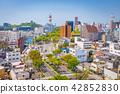 Wakayama City, Japan Skyline 42852830