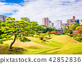 Kumamoto City, Japan Gardens 42852836