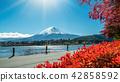 Mount Fuji in Autumn Color, Japan 42858592
