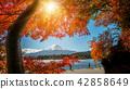 Mount Fuji in Autumn Color, Japan 42858649